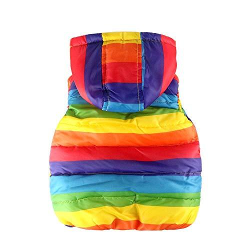 H.eternal Girls Gilet Baby Boys Girls Coat Strip Rainbow Zipper Jackets Baby Warm Winter Casual Hooded Coat Waistcoat Toddler Sleeveless Windbreaker Ourwear Age 2-6 Years (Multicolor, 2-3 Years)