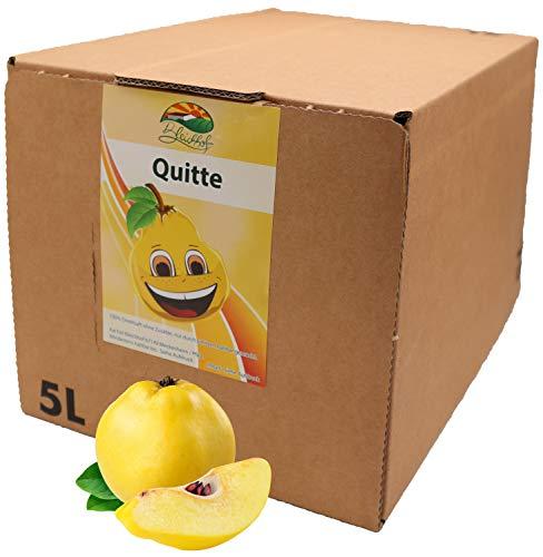 Bleichhof Quittensaft - 100% Direktsaft ohne Zusätze, Bag-in-Box Verpackung mit Zapfsystem (1x 5l Saftbox)