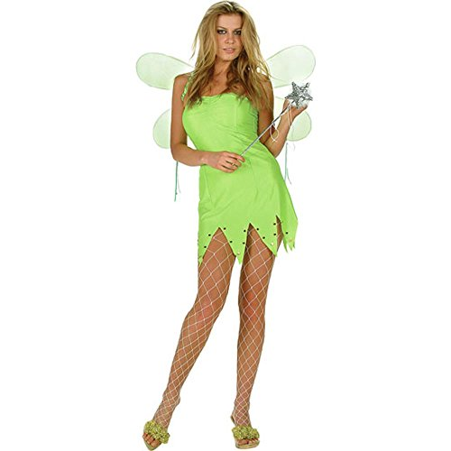 Adult Tinkerbell Dress with Fairy Wings
