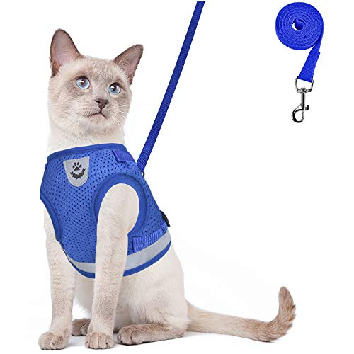 GAUTERF Cat Harness, Cat Escape Harness Proof with Leash - Leather Case Style Adjustable Reflective Soft Mesh Corduroy Cat and Dog Harnesses - Pet Universal Harnesses (Small, Blue)