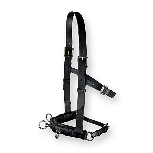 DP Saddlery's Leather Schooling Cavesson | Stainless Steel Hardware & Supple All-Natural Black Nappa Leather | 4 Buckle Adjustable Straps | English Style Horse Training & Lunging Equipment | 0240