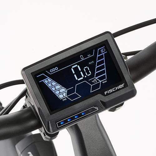 FISCHER Herren – E-Bike Trekking VIATOR 4.0i (2020), grün matt, 28 Zoll, RH 50 cm, Mittelmotor 50 Nm, 48 Volt Akku im Rahmen Bild 6*