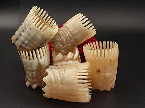 Peine de cuerno Herramientas 1pcs natural del cuerno del peine Cabeza del masaje del baño del champú del peine cepillo for el pelo de peluquería de estilo de peluquería Suministros Peine de dientes an