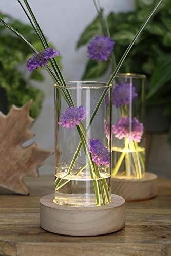 NaDeco LED Pflanzenglas Holzfuß h.17 cm Ø8,5cm LED Vase Flaschengarten Biotopglas Pflanzenterrarium Deko Flaschenglas Tischvase Hochzeitdekoration Tischdekoration