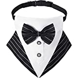 Bandana da Smoking per Cani Collare Bandana da Matrimonio Formale per Cani con Design a Cravatta a Farfalla Fazzoletto da Collo con Collo a Cravatta a Farfalla Formale Regolabile