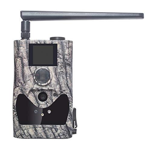 BolyGuard Wildkamera Fotofalle 1080P Full HD 24MP Jagdkamera Weitwinkel Vision Infrarote 27M/90ft Nachtsicht wasserdichte IP66 Überwachungskamera (4G)