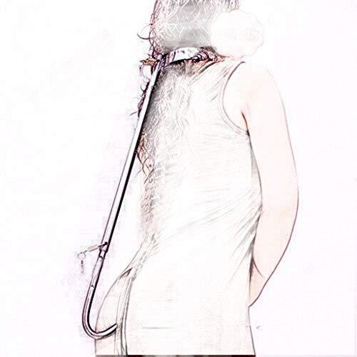 ZYAM Bondagehalsband anal Haken Edelstahl verstellbare Länge, Kolbenstecker Bondage Haken, Mandatory Anal Spielzeug für Frauen/Anfänger/Fortgeschrittene, mit Schlössern Women