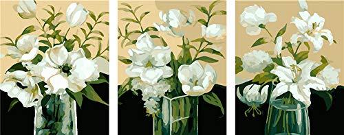 WOWDECOR DIY Malen nach Zahlen 3 teilig Bilder, Weiße Lilie Vase Romantisch 40x50cm x3, 3er Set triptychon XXL groß (mit Rahmen)