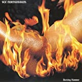Bests Selection by Sex Machineguns (2001-10-31)