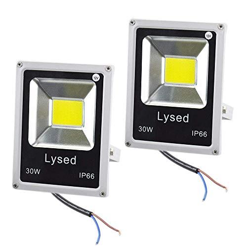 Lysed 12 Volt Flood Light Bowfishing Lights 30W Low Voltage Flood Lights Outdoor IP66 Waterproof (White Light 2Pack)