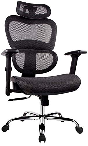 Office Chair, Ergonomics Mesh Chair Computer Chair Desk Chair High Back Chair w/Adjustable Headrest and Armrests - Black