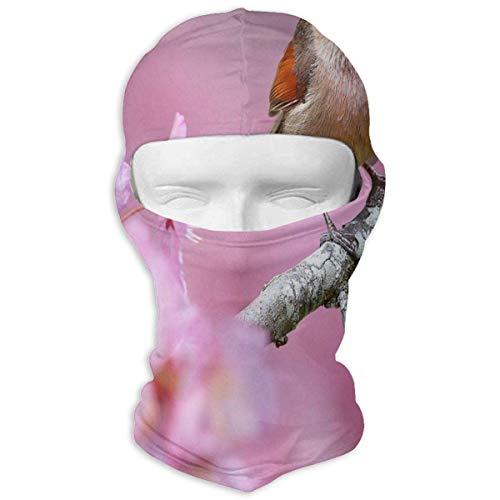 Ejdkdo Balaclava Squirrel Snow Masques complets Ski Headcover Moto Capot pour Vélo Sport Alpinisme Unisex19