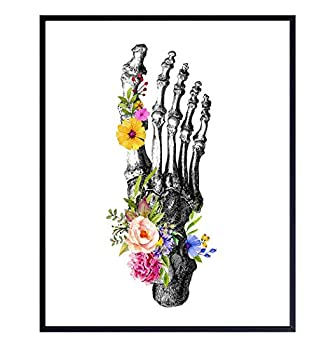 foot anatomy images