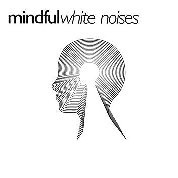 Mindful White Noises