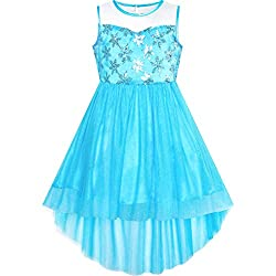 Blue Snowflake With Sequin & Mesh Princess Tulle Dress