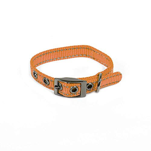 Max and Neo MAX Reflective Metal Buckle Dog Collar - We Donate a Collar to a Dog Rescue for Every Collar Sold (X-Small, Orange)