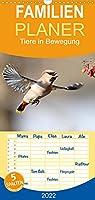 """Tiere in Bewegung - Familienplaner hoch (Wandkalender 2022 , 21 cm x 45 cm, hoch): Faszinierende Aufnahmen aus dem """"Wildlife"""" (Monatskalender, 14 Seiten )"""