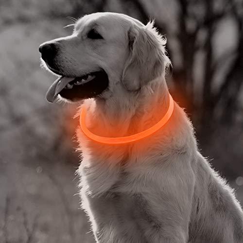 BSEEN Collar de Perro LED, Recargable por USB, Luces de Seguridad para Perros pequeños, medianos y Grandes