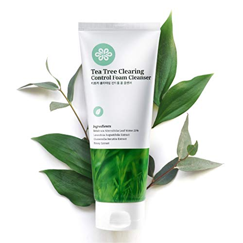 LovLuv Tea Tree Foaming Facial Cleanser, K Beauty Daily Face Wash with Natural Ingredients and Anti...