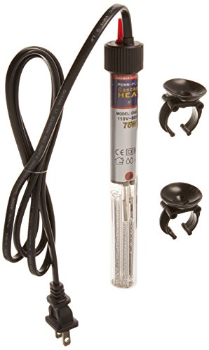 Best Position for Aquarium Heater