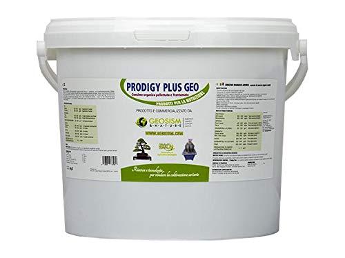 Prodigy Plus 1/3 mm (5 kg), concime granulare per bonsai, piante e fiori