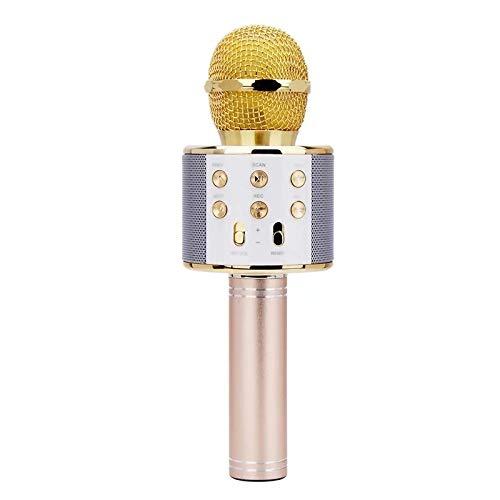 EEM Micrfono inalmbrico Karaok, 4 en 1 mquina porttil de Karaoke con Altavoz porttil Bluetooth, Reproductor KTV domstico con funcin de grabacin (Gold)