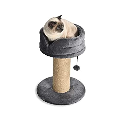 AmazonBasics Large Cat Scratching Post Tree Tower with Platform Bed, 16 x 16 x 21 Inches, Grey