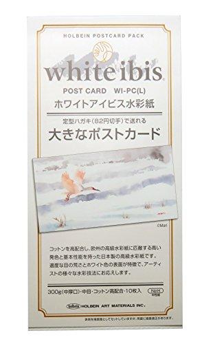 ホルベイン 大きなポストカード ホワイトアイビス 10枚入り 270478 WI-PC(L)