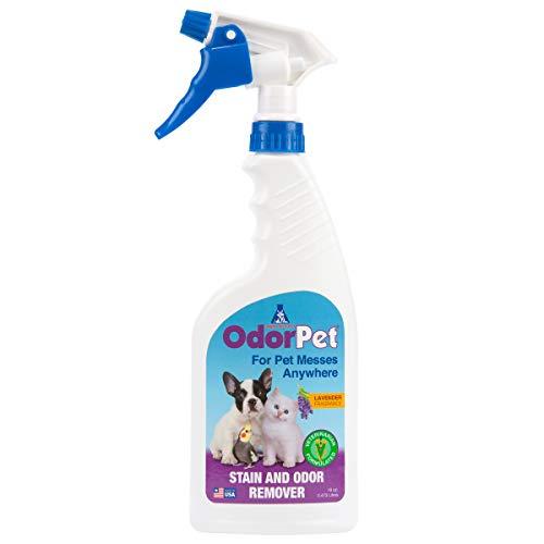 OdorPet Home Pet Spray | Enzyme Carpet Cleaner | Pet Urine Odor Eliminator | Lavender Scent | Ready to Use Spray Bottle | 16 Oz. by Alpha Tech Pet