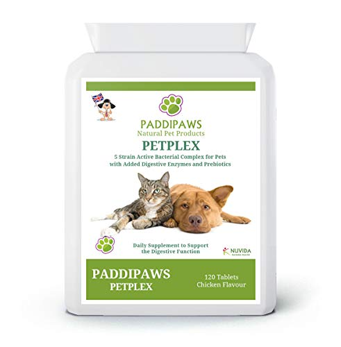 PADDIPAWS Petplex Active Bacteria supplement with added Digestive Enzymes and Prebiotics to provide the ultimate digestive aid and healthy gut bacteria Probiotic Supplement for Dogs and Cats