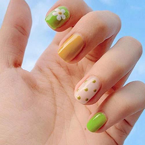 YQSL 24 Stück/Set Sommer Hellgrüner Wellenpunkt Gefälschte Nägel Fertige Vollabdeckung Nail Art Quadratischer Kopf Mehrfarbig Mit Tn