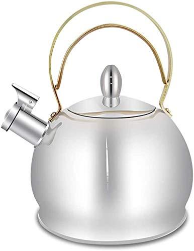 Bouilloire à induction gaz traditionnel CUISINIÈRE Bouilloire avec sifflet Convient for tous types, y compris Hob Et Fonte Argent UOMUN