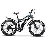 ALFINA X-03plus 1000W 48V 17AH Bicicleta eléctrica Mountain ebike 45KM / h 26 Pulgadas Impermeable Bicicleta eléctrica batería de Litio
