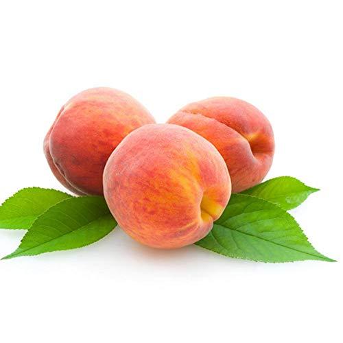 5pcs Peach Tree Seeds Sweet Delicious Fruit Bonsai Seeds Dwarf Peach Tree
