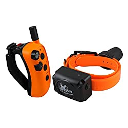 D.T. Systems R.A.P.T. 1450 Remote Dog Trainer, Orange/Black