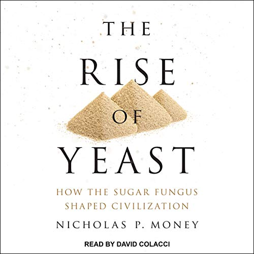 The Rise of Yeast cover art