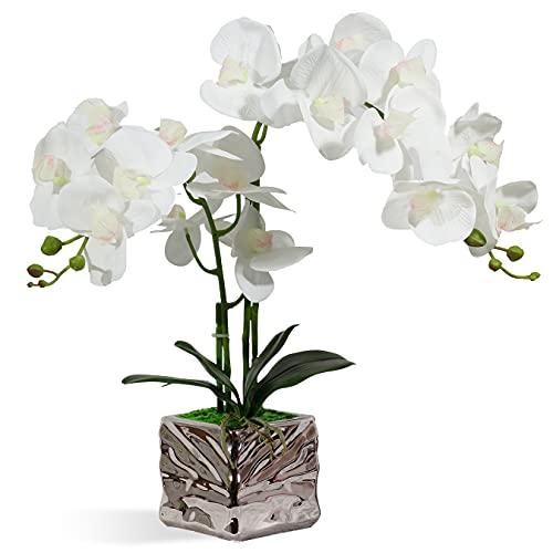 RENATUHOM Künstliche Orchidee weiße Orchidee künstliche Orchidee Bonsai mit Silber-Keramik Vase künstliche Topfpflanze für Zuhause Schlafzimmer Küche Tischdekoration