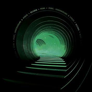 Numb (feat. DeathbyRomy & PVRIS)