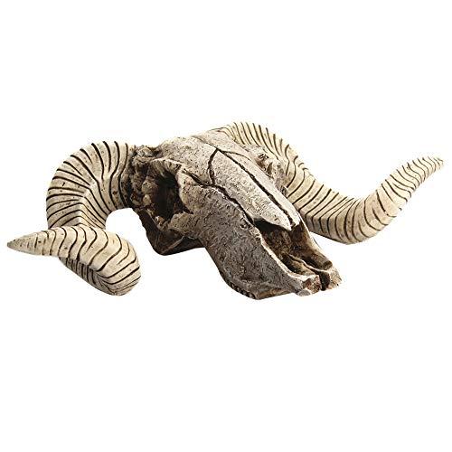 Colgante de calavera de cabra 3D para decoración de pared de resina, diseño de calavera de oveja, No nulo, como se muestra en la imagen, 15.5x6x17.5cm