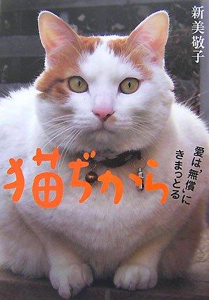 猫ぢから  愛は'無償'にきまっとるの詳細を見る