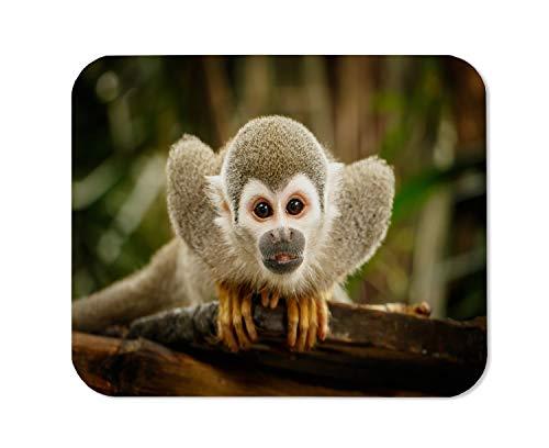 Yeuss Alfombrilla De Ratón Rectangular Alfombrilla Antideslizante, Mira Mono Ardilla En El Juego De La Selva Ecuatoriana Alfombrillas De Ratón Animales Salvajes Amazónicos, Gris