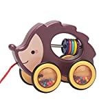 NC Cartoon Animal Walk-A-Long Plastic Pull-Along Toy Dragging Early Learning Motor Skills Walker Toys for Toddler Gift - Hedgehog