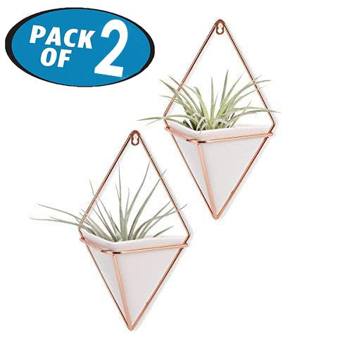 Originalidad Hanging Planter & Geometric Wall Planter Container for Succulent Plants, Air Plant, Mini Cactus, Faux Plants and More Home D