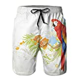 Men's Swim Trunks Board Shorts Beach Pants Surfing Boardshorts,Summer Background with Floral Ornaments and Wise Smart Parrot On Tree Branch,Fancy Print Hawaiian Shorts Four Size,Large