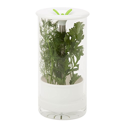 Honey-Can-Do Glass Herb Preserver, Clear/White