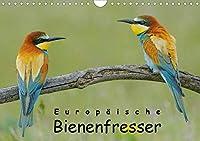 Europaeische Bienenfresser (Wandkalender 2021 DIN A4 quer): Faszinierende Portraits von Deutschlands farbenpraechtigstem Vogel (Monatskalender, 14 Seiten )