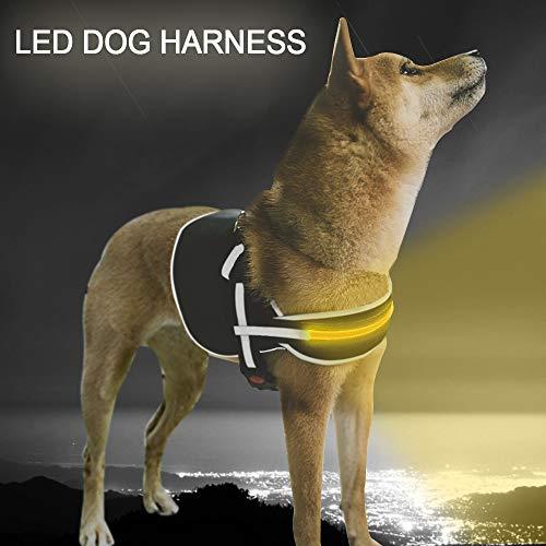 Wiyifada LED Dog Harness Adjustable Vest Large...