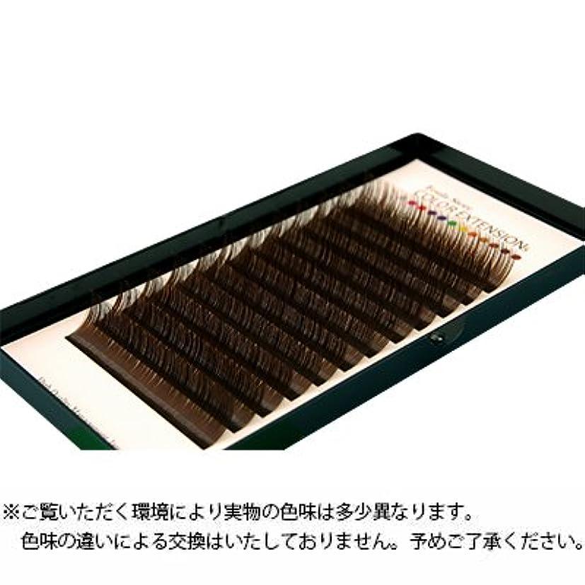 タンパク質パッケージ専門【フーラ】カラーボリュームアップラッシュ 12列シート ダークブラウン Cカール 0.06mm×11mm