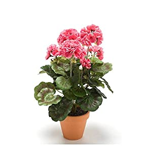 Artplants Set 8 x Geranio Artificial MASALIA en Maceta de Terracota, Rosa, 35cm – Geranio de plástico/Flor Falsa