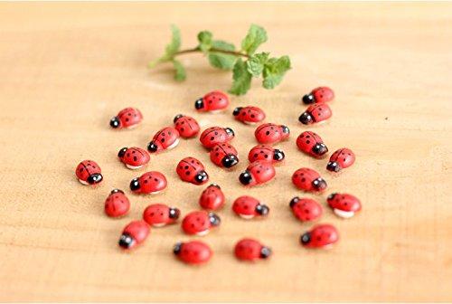 C.X.Y. Lot de 432 petites coccinelles adhésives en bois, 15 mm, pour décoration de bonbonnières